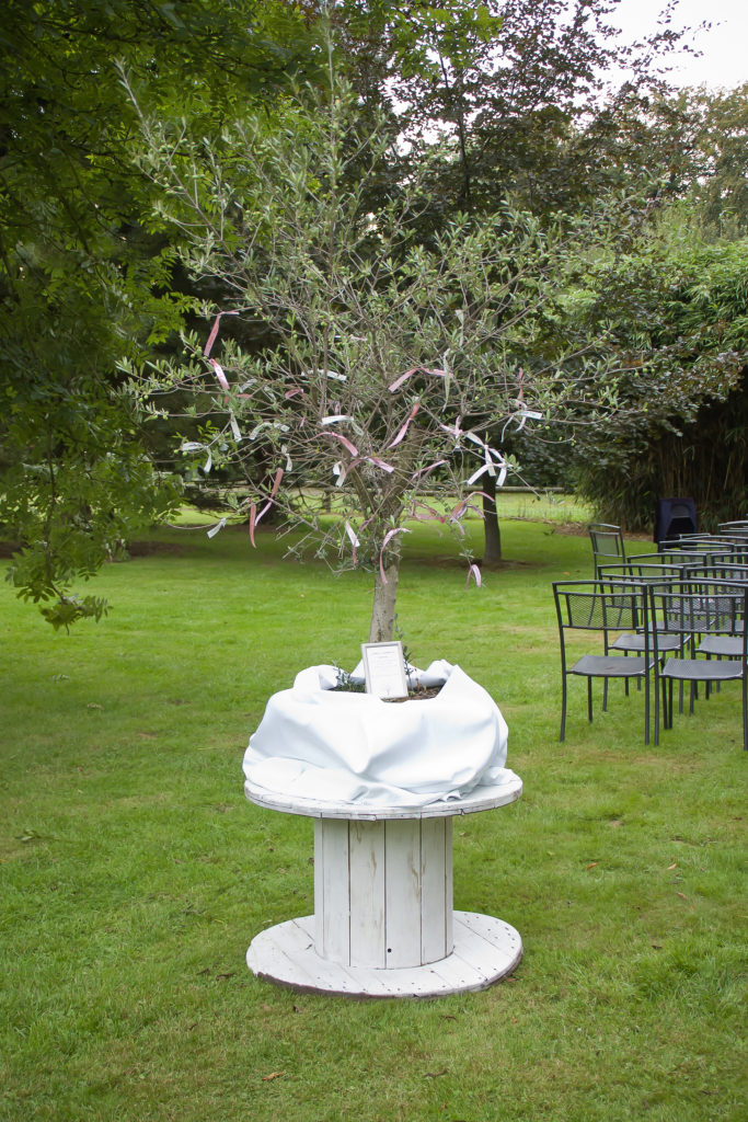 arbre à souhaits
